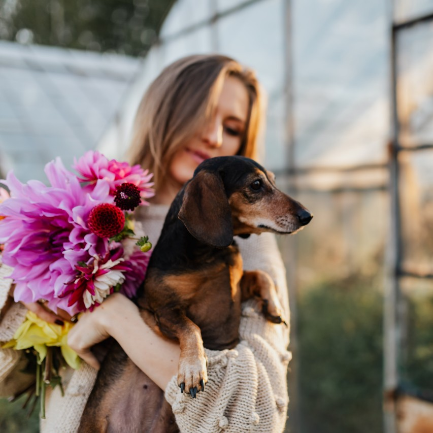 how to be happier today a woman holding a dark colored dog along with purple big flowers