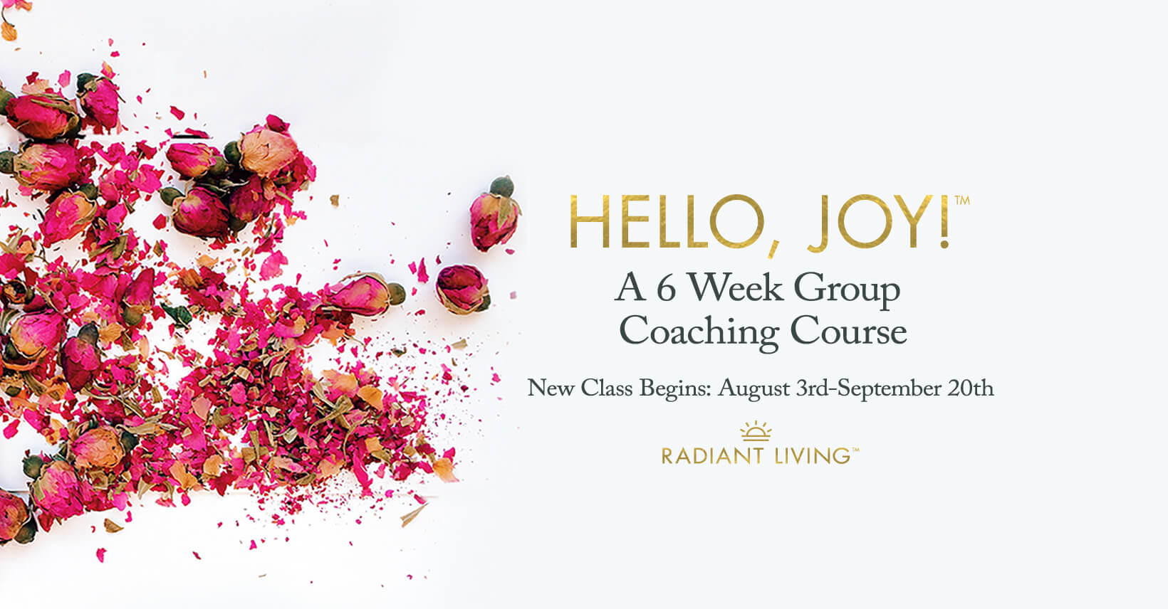 Hello, Joy! Group Program Banner