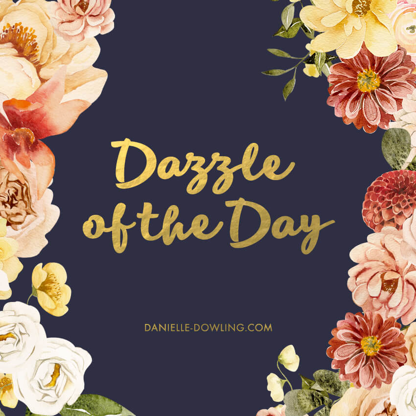 dazzle of the day square banner image